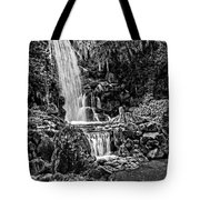 20120915-dsc09800_bw Tote Bag by Christopher Holmes