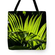 20120915-dsc09911 Tote Bag by Christopher Holmes