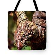 20120915-dsc09919 Tote Bag