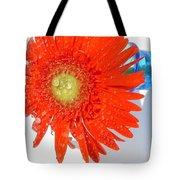 2042a-002 Tote Bag