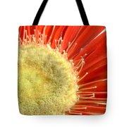 2049a1-004 Tote Bag