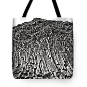 24 Million Years Old ... Tote Bag