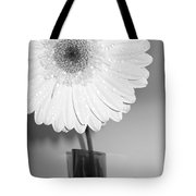 2841-001 Tote Bag
