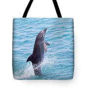 Atlantic Bottlenose Dolphin Tote Bag