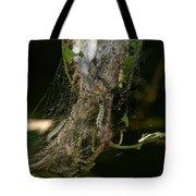 Bird-cherry Ermine Caterpillars Tote Bag