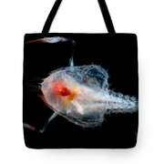 Blind Lobster Tote Bag