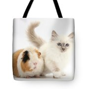 Blue-point Kitten And Guinea Pig Tote Bag