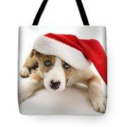 Border Collie Puppy Tote Bag