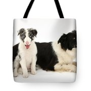Border Collies Tote Bag