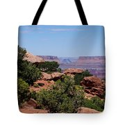 By The Canyon Tote Bag
