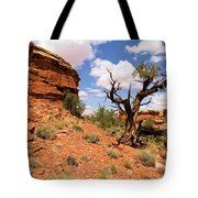Canyonlands Needles District Tote Bag