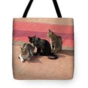 3 Cats Looking Pensive Tote Bag