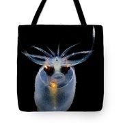 Cockatoo Squid Tote Bag