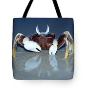 Crab On The Tropical Beach Tote Bag