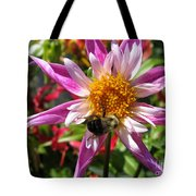 Dahlia Named Lorona Dawn Tote Bag