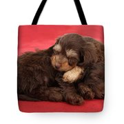 Doxie-doodle Puppies Tote Bag