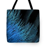 Eastern Bluebird Feathers Tote Bag
