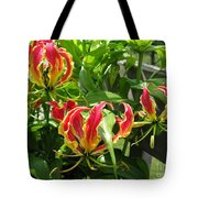 Gloriosa Named Rothschildiana Tote Bag