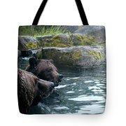 Grizzly Bear Or Brown Bear Tote Bag