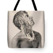 Historical Anatomical Illustration Tote Bag