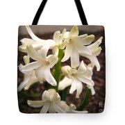Hyacinth Named Aiolos Tote Bag
