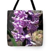 Hyacinth Named Splendid Cornelia Tote Bag