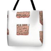 Illustration Of Epithelium Types Tote Bag