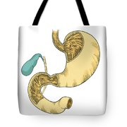 Illustration Of Stomach And Duodenum Tote Bag