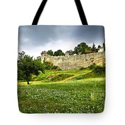 Kalemegdan Fortress In Belgrade Tote Bag by Elena Elisseeva
