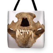 Kodiak Bear Skull Tote Bag