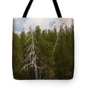 Lake Huosius At Hossa Tote Bag
