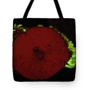 Luminescent Mushroom Panellus Stipticus Tote Bag