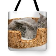 Mother Cat With Kitten Tote Bag
