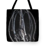 Northern Comb Jelly Tote Bag