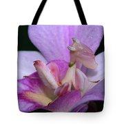 Orchid Mantis Hymenopus Coronatus Tote Bag