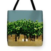 Photoperiodicity In Soybean Plants Tote Bag
