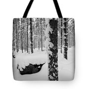 Pine Forest In January Tote Bag