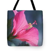 Pink, Blue And Green Tote Bag