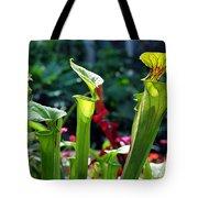 Sarracenia Flava Tote Bag