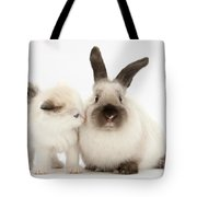 Ragdoll-cross Kitten And Young Tote Bag