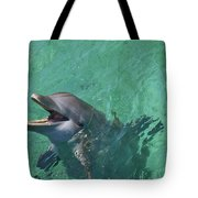 Roatan, Bay Islands, Honduras Tote Bag