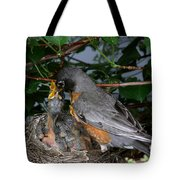 Robin Feeding Its Young Tote Bag by Ted Kinsman