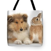 Rough Collie Pup With Rabbit Tote Bag