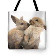 Sandy Rabbits Sharing Grass Tote Bag