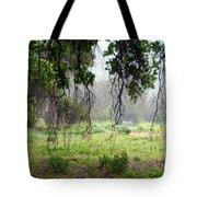 Santa Susana Mountains Tote Bag
