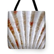 Seashell Surface Tote Bag by Elena Elisseeva