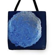 Sem Of Cretaceous-tertiary Kt Meteorite Tote Bag