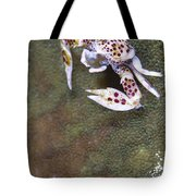 Spotted Porcelain Crab Feeding Tote Bag