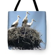 3 Storks In The Nest. Lithuania Tote Bag