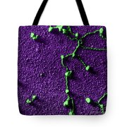 Tem Of Rna Attached To Dna Tote Bag
